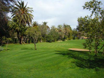 dacia-golf-course